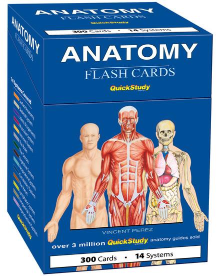 QuickStudy | Anatomy Flash Cards