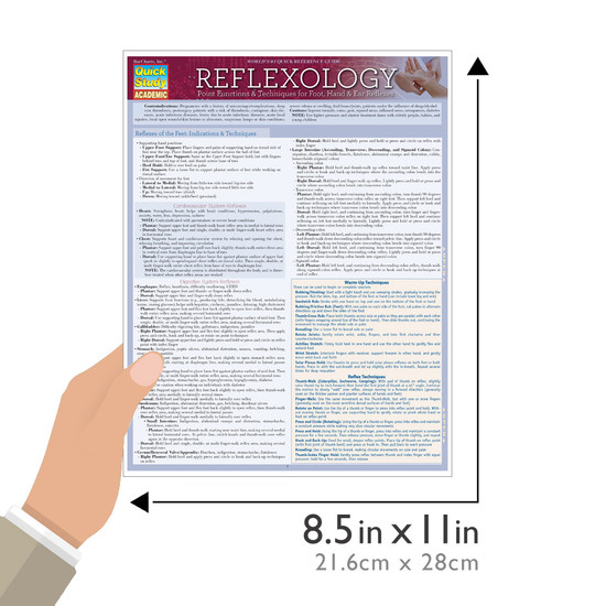 Quick Study QuickStudy Reflexology: Point Functions & Technique Laminated Study Guide BarCharts Publishing Medical Reference Guide Size