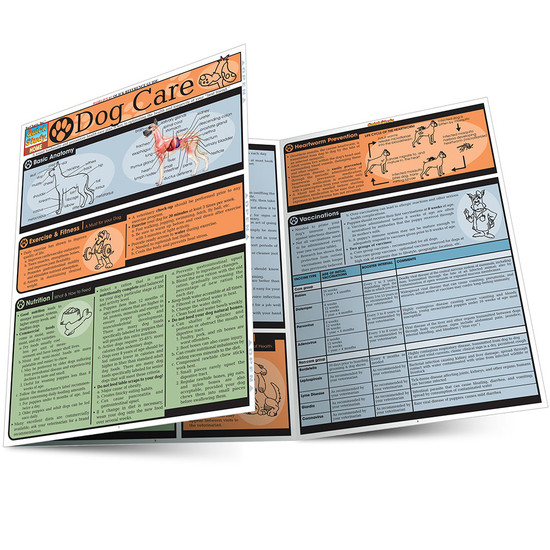 Quick Study QuickStudy Dog Care Laminated Reference Guide BarCharts Publishing Pet care & Health Reference Outline Main Image