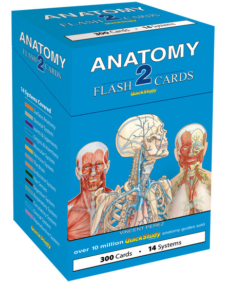 QuickStudy | Anatomy 2 Flash Cards