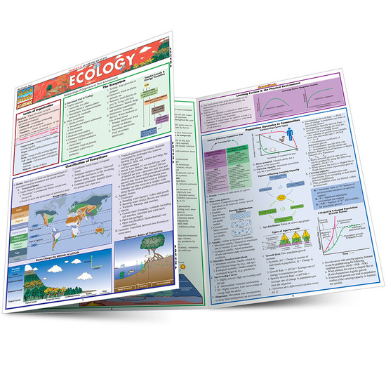 Quick Study QuickStudy Ecology Laminated Study Guide BarCharts Publishing Academic Science Guide Main Image
