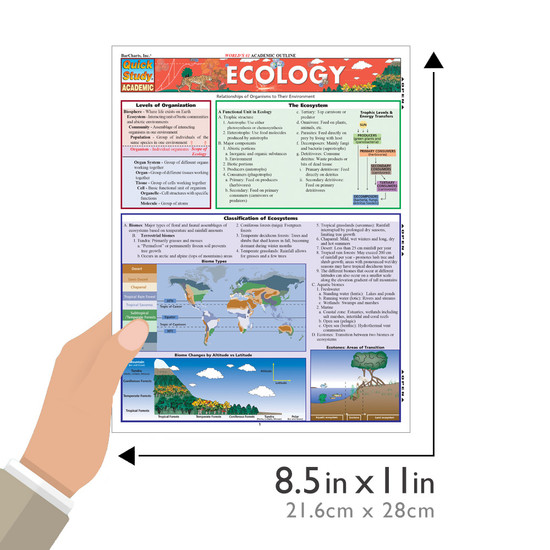 Quick Study QuickStudy Ecology Laminated Study Guide BarCharts Publishing Academic Science Guide Size