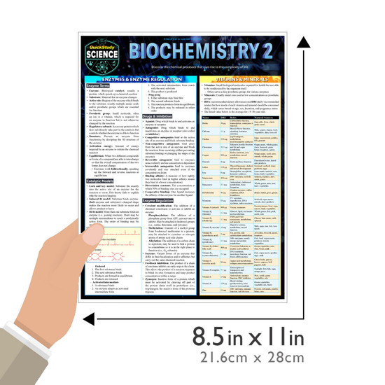Quick Study QuickStudy Biochemistry 2 Laminated Study Guide BarCharts Publishing Life Science Reference Guide Size