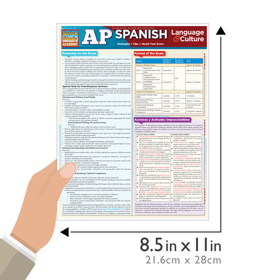 Quick Study QuickStudy AP Spanish: Language & Culture Laminated Study Guide BarCharts Publishing Education Guide Size