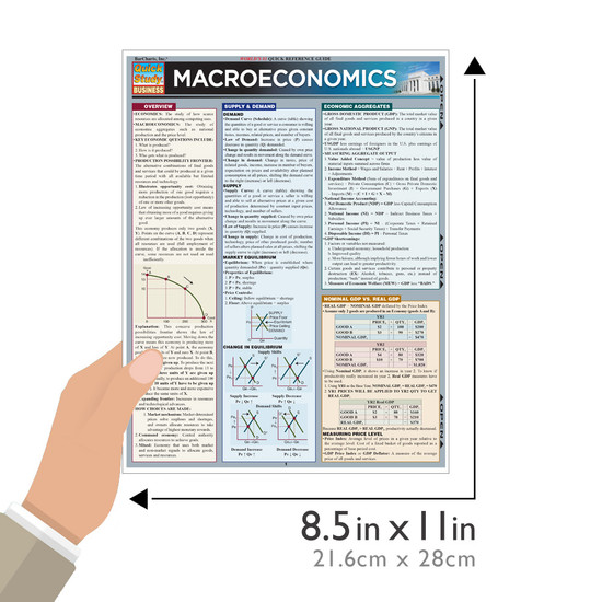 QuickStudy | Macroeconomics Laminated Study Guide