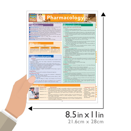 QuickStudy Quick Study Pharmacology Laminated Study Guide BarCharts Publishing Medical Study Guide Size