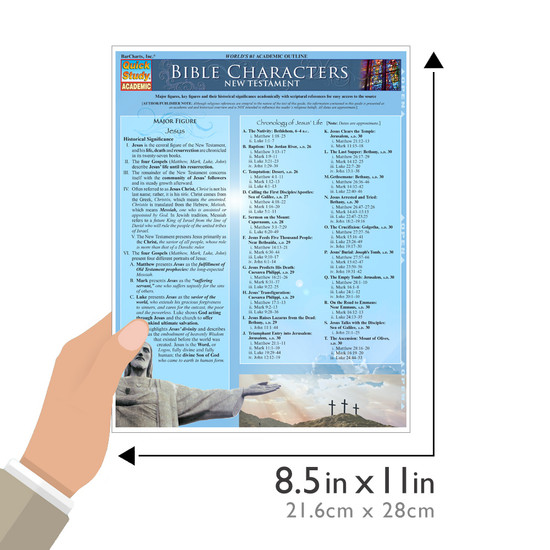 Quick Study QuickStudy Bible Characters: New Testament Laminated Study Guide BarCharts Publishing Religious Studies Reference Guide Size
