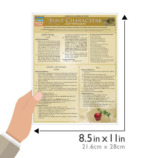Quick Study QuickStudy Bible Characters: Old Testament Laminated Study Guide BarCharts Publishing Guide Size