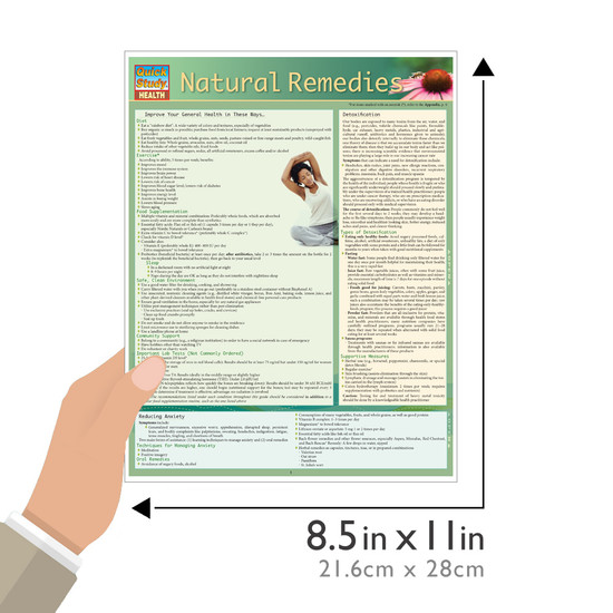 Quick Study QuickStudy Natural Remedies Laminated Reference Guide BarCharts Publishing Health Guide Size