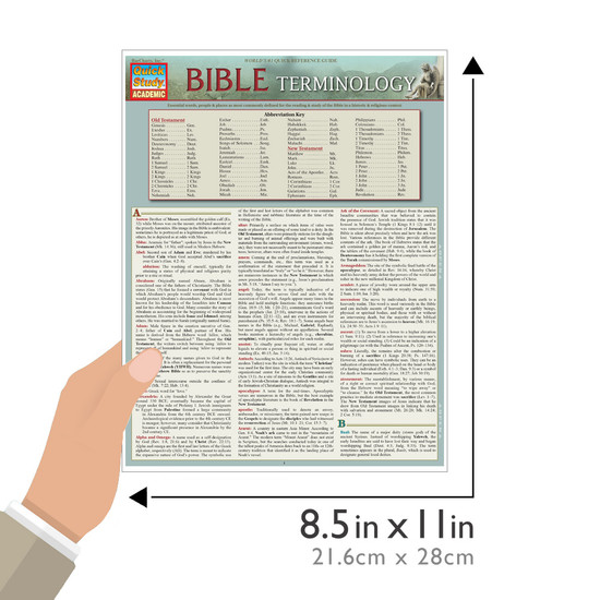 Quick Study QuickStudy Bible Terminology Laminated Study Guide BarCharts Publishing Religion Academic Reference Guide Size