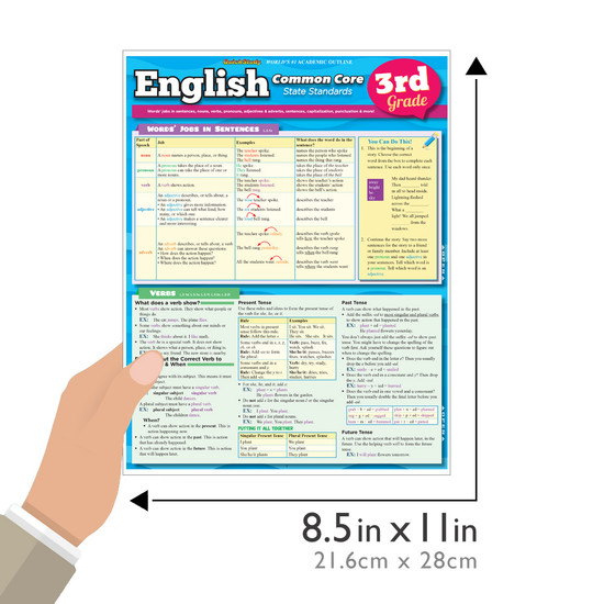 Quick Study QuickStudy English: Common Core 3rd Grade Laminated Study Guide BarCharts Publishing Inc Guide Size
