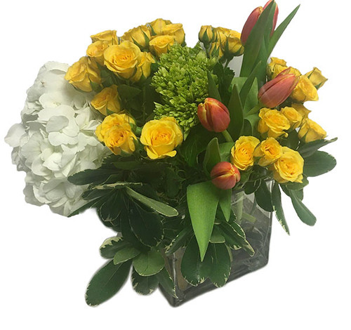 Fresh flower arrangement with Roses, Tulips, Hydrangea and Pittosporum.