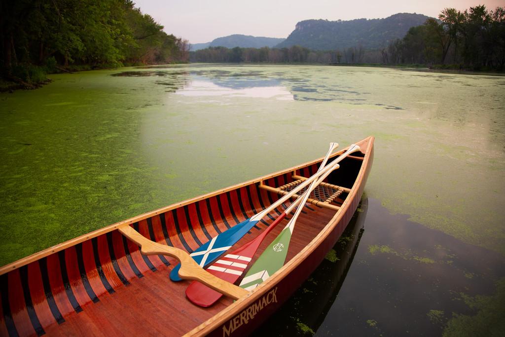 Rapids Beavertail Paddle