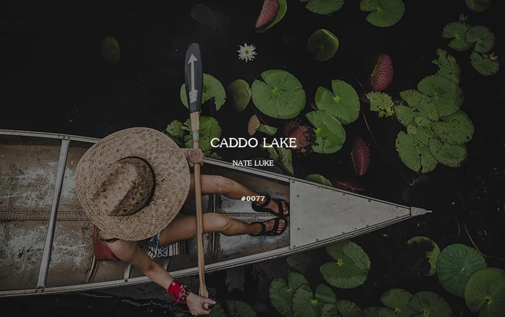 Field Log #0077 - Caddo Lake