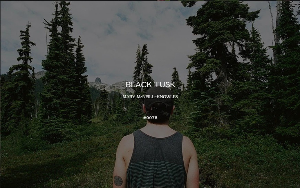 Field Log #0078 - Black Tusk