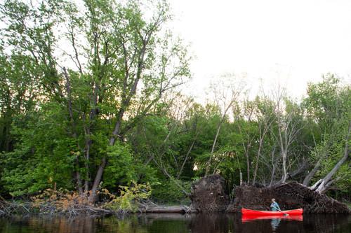 Used/shop Baboosic - 14' Fiberglass Solo Canoe
