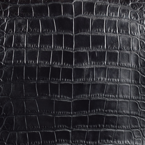 Black Alligator Skin
