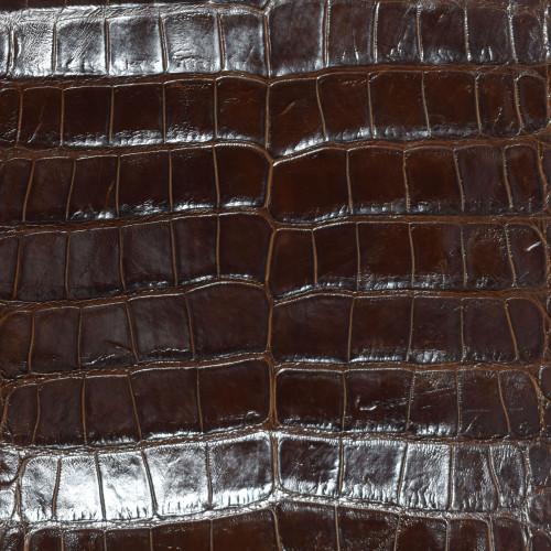 Chocolate Brown Alligator Skin