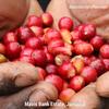 Jamaican Blue Mountain Blend Coffee