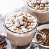 Belgian White Gourmet Hot Cocoa Drink