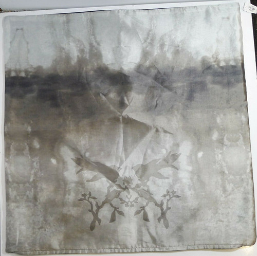 "CB2 Watercolor Silk Pillow Cover Case Black & Gray w/Birds 23"" x 23"" *Cover Only"