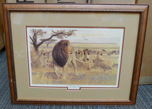 """Interrupted Dinner"" Lion - Remington Game Art Collection Framed Print Vintage"