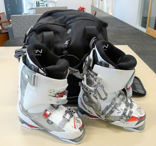 Tecnica Dragon 100 Ski Boots Size 23.5 with Athalon Heated Boot Bag