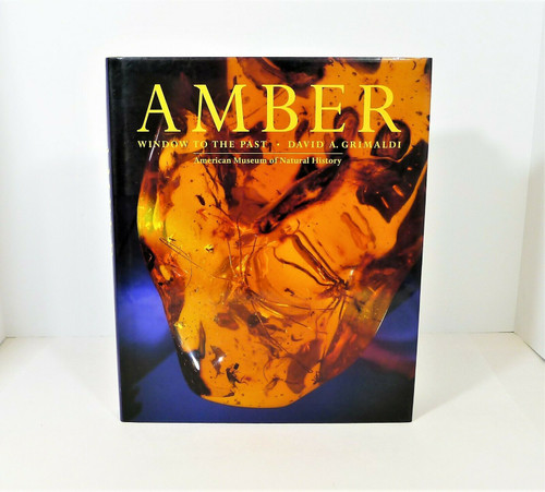 Amber Window to the Past Hardback Book by David A. Grimaldi