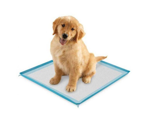 ClearQuest Blue Silicone Puppy Pad Holder US5355 - NEW