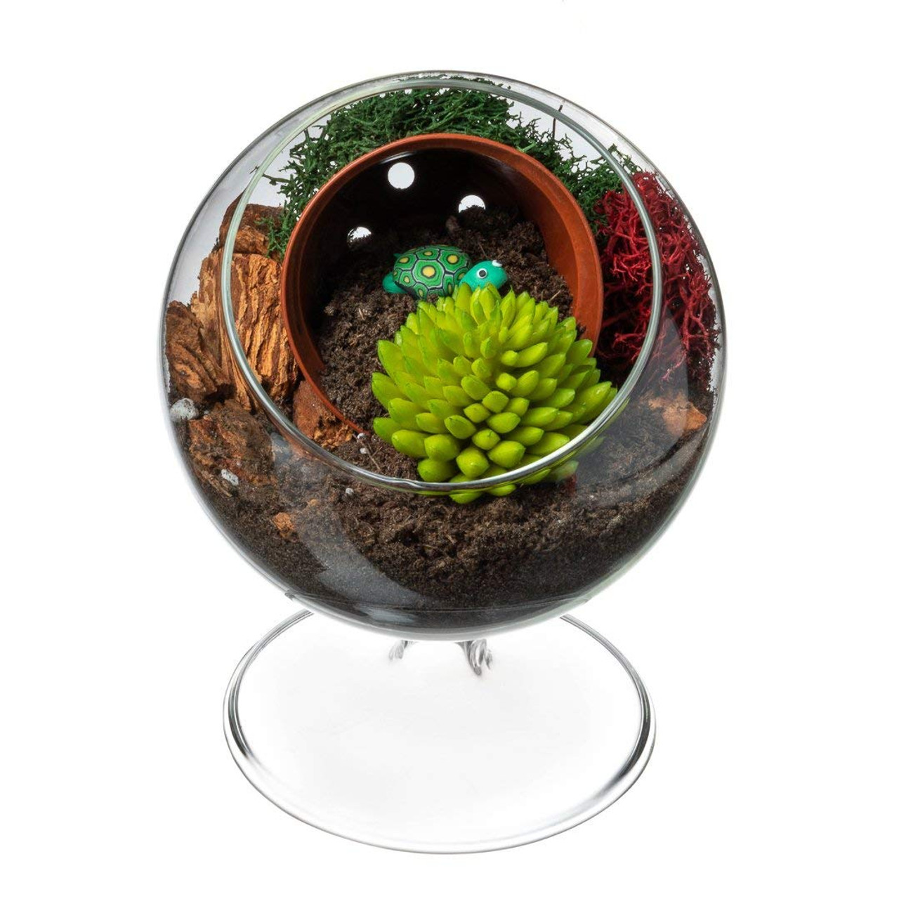 Faux Succulent Terrarium Kit Turtle Island Complete Diy Gift Set 4 Standing Glass Globe With Faux Succulent