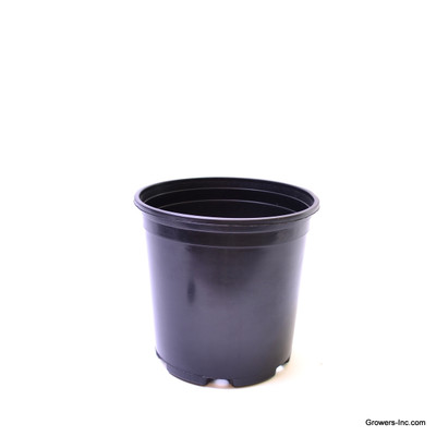 #1 Nursery Container (QTY 150)