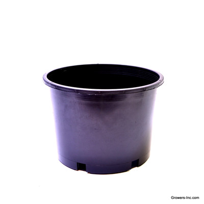 #7-s Nursery Container (QTY 25)