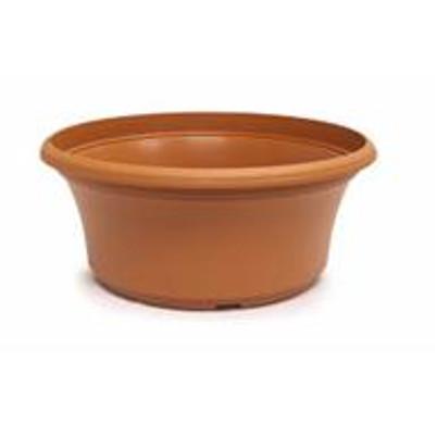 "12"" Panterra Bowl"