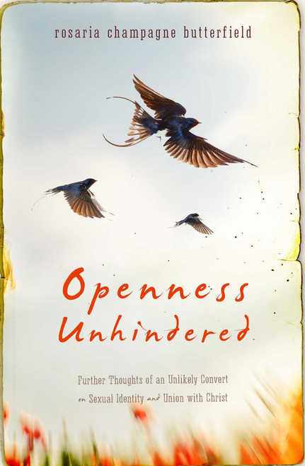 Openness Unhindered Further Thoughts of an Unlikely Convert on Sexual Identity and Union with Christ [Paperback]