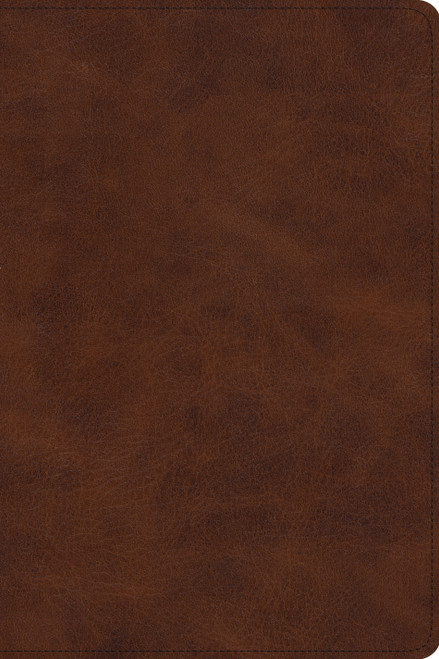 ESV Story of Redemption Bible (TruTone Brown) A Journey through the Unfolding Promises of God [Trutone]
