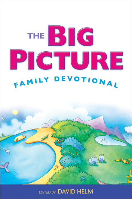 The Big Picture Family Devotional [Paperback]
