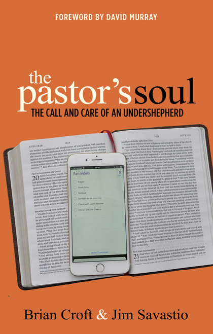 The Pastor's Soul The Call and Care of an Undershepherd [Paperback]