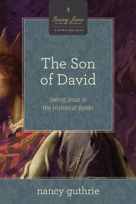 The Son of David Seeing Jesus in the Historical Books [Paperback]