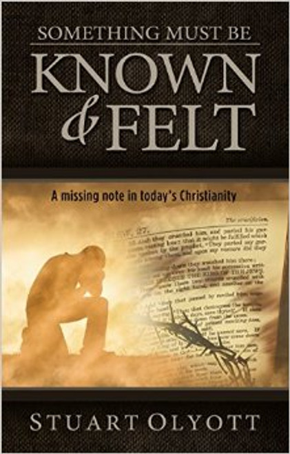 Something Must Be Known and Felt [Paperback]