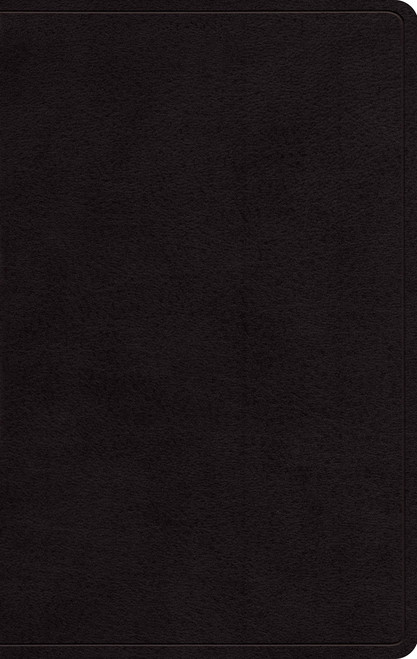 ESV Large Print Personal Size Bible Genuine Leather Black [Leather]
