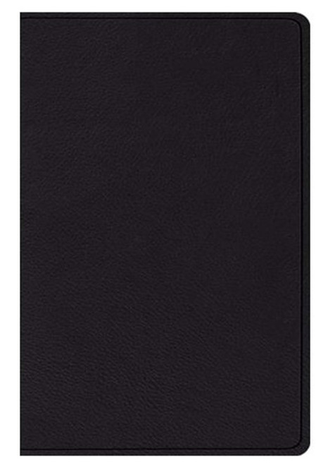 ESV Verse-by-Verse Reference Bible Top Grain Leather [Leather]