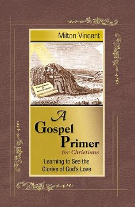 A Gospel Primer for Christians Learning to See the Glories of God's Love [Paperback]