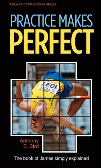 James Practice Makes Perfect [Paperback]