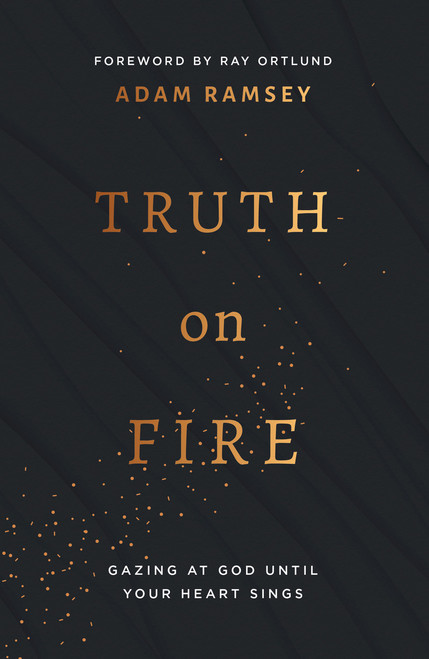 Truth on Fire Gazing at God Until Your Heart Sings [Paperback]