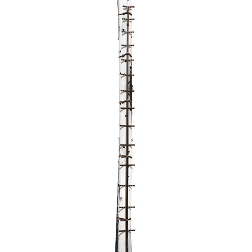 Traction 20' Climbing Stick