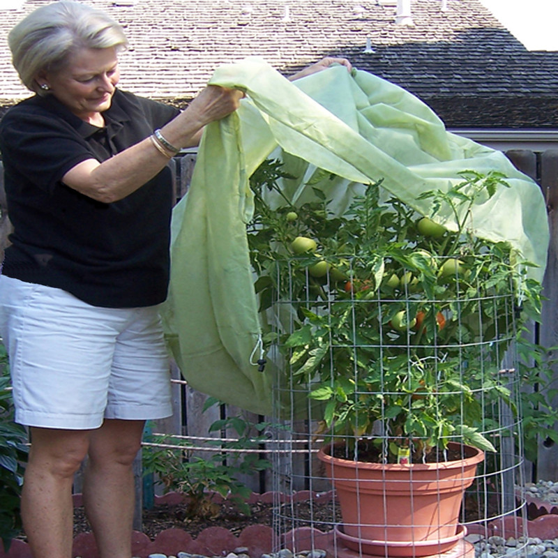 Tomato Cover easily covers tomato plants, as well as other plants or groupings of smaller plants.