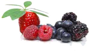 c-berries.png