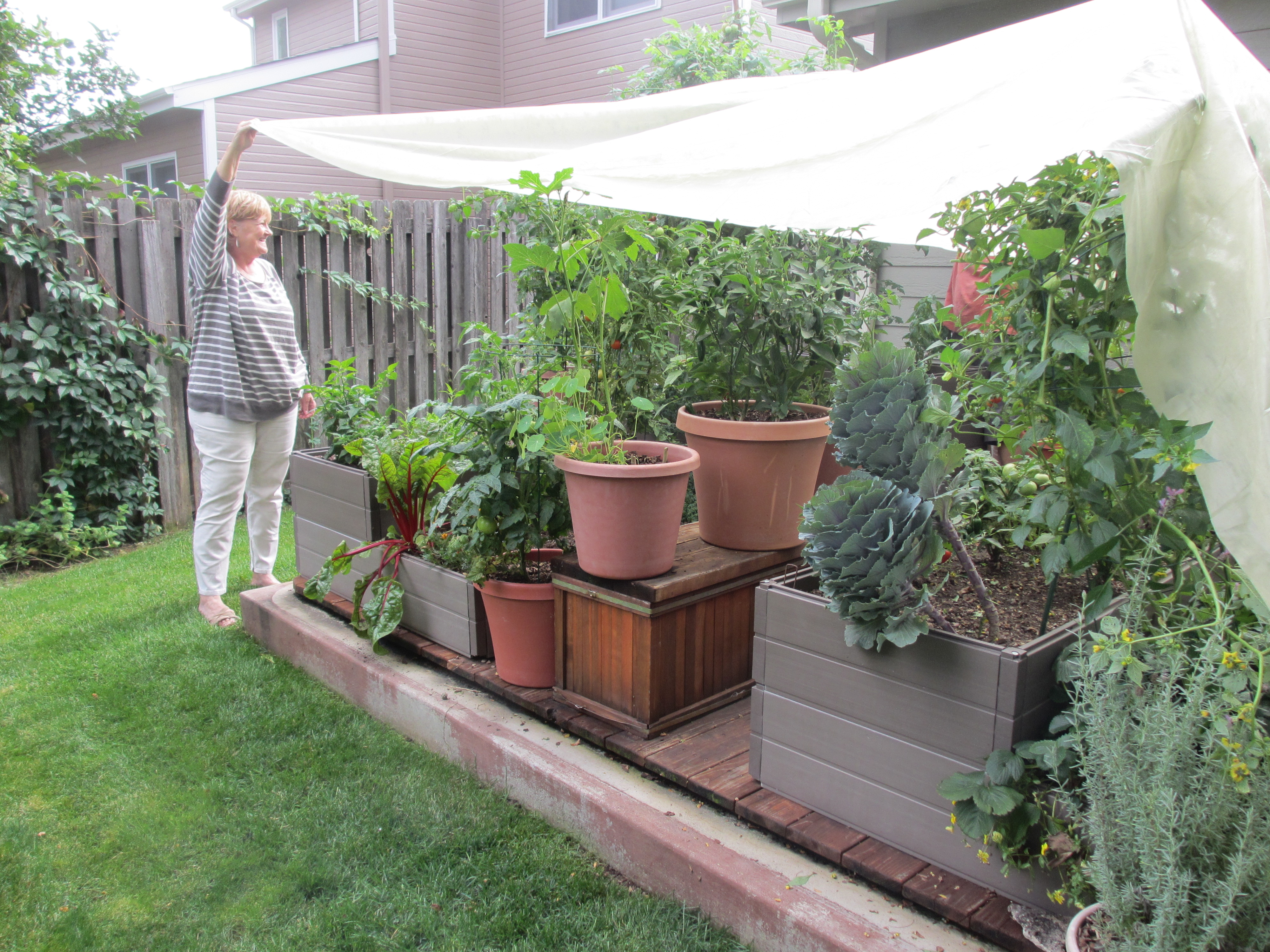 Garden Bed cover is 15 feet by 10 feet