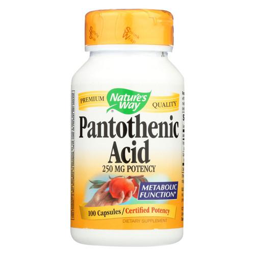Nature's Way Pantothenic Acid - 250 mg - 100 Capsules