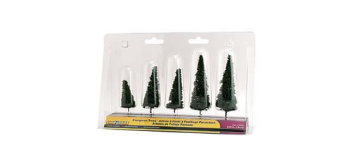 Evergreen Trees 5/